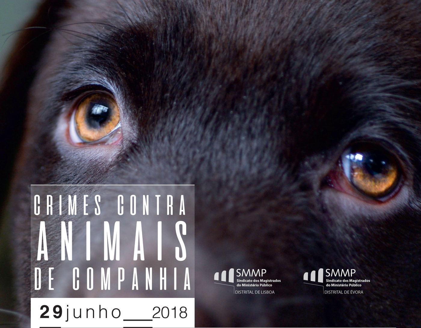 Crimes Contra Animais de Companhia